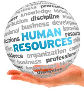 Human Resources - Careers in IT
